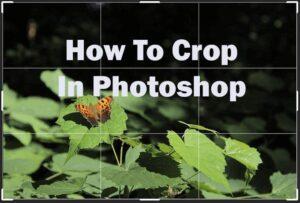 Comment recadrer dans Photoshop