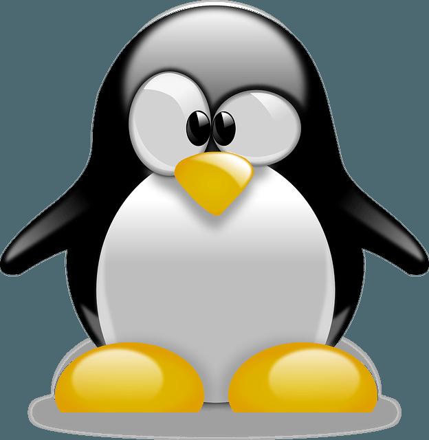 Linux Live USB Creator vous permet de creer un systeme