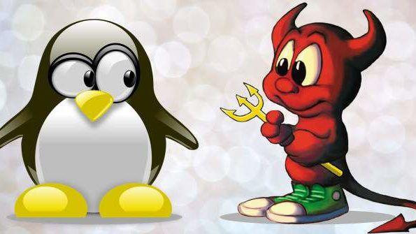 cropped Linux vs BSD main.jpg.optimal